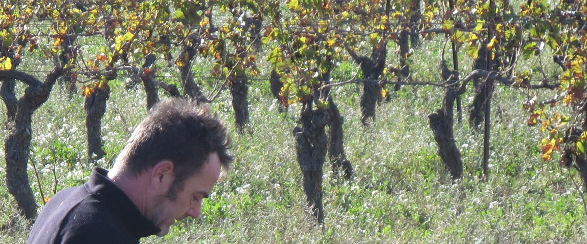 Des Vignerons