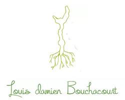 Louis Damien Bouchacourt