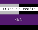 La Roche Buissière