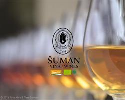 Šuman vina-wines