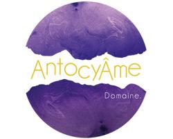 AntocyÂme